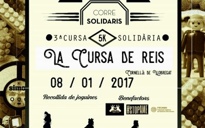 CURSA DE REIS